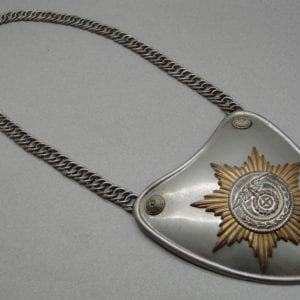 Early SA/SS Standard Bearer's Gorget